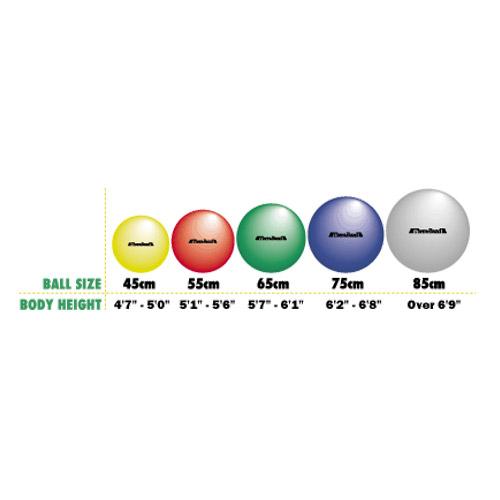Thera-Band® Exercise Balls